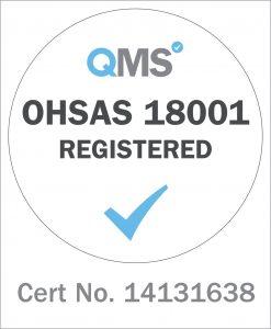 QMS 18001 logo 14131638